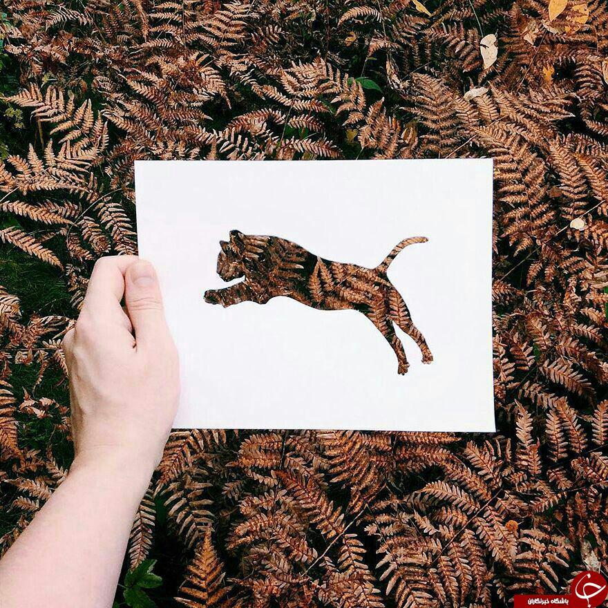نقاشی شگفت انگیزحیوانات با طبیعت+تصاویر