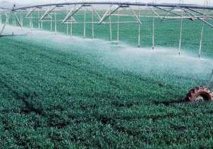 تکمیل پروژههای آب و خاک، اولویت جهاد کشاورزی کهگیلویه و بویراحمد است