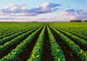 واگذاری اراضی لرستان به طرح های کشاورزی و غیر کشاورزی