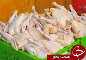 ممنوعیت عرضه مرغ با وزن بیش از 2 کیلوگرم در کرمان