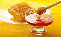 تولید عسل در زنجان شیرین تر شد