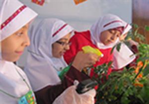 افتتاح 5 مدرسه جامع محیط زیستی در قزوین
