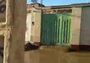 بسته خبری + فیلم و عکس