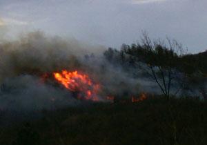 آتشسوزی در روستای اسپی خانی + فیلم