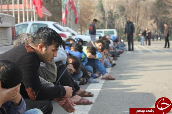 28 گروه بزرگ خلافکاران پایتخت در یک شب متلاشی شد+تصاویر