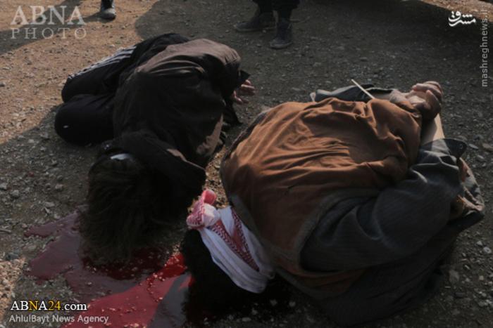 اعدام مردان سوری به دست داعش در حلب +عکس