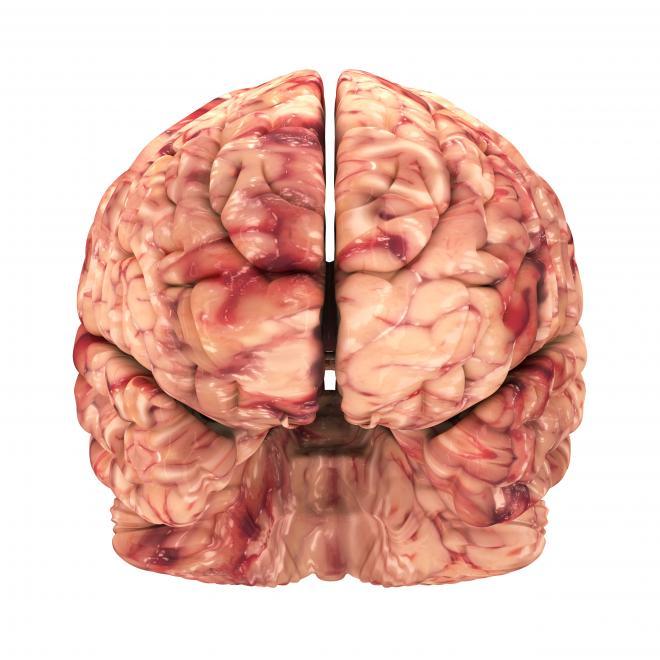 """4078384 218 """"خدا"""" در کجای مغز انسان قرار دارد؟"""