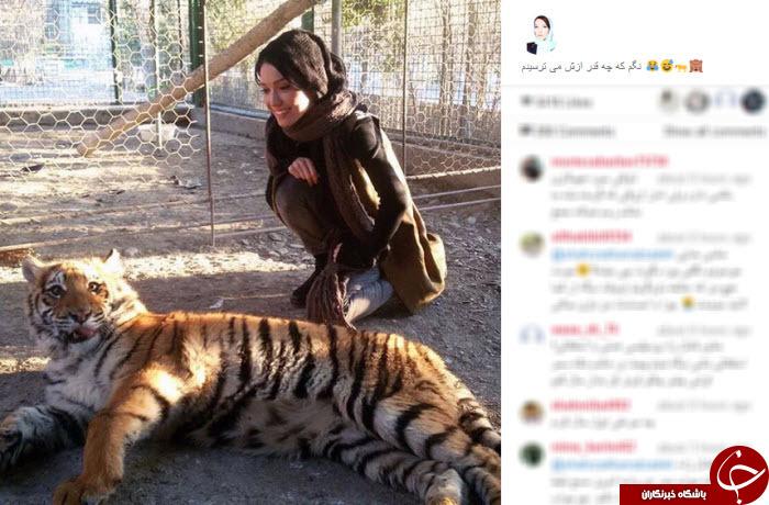 دوستی خانم بازیگر با ببر و میمون+ تصاویر