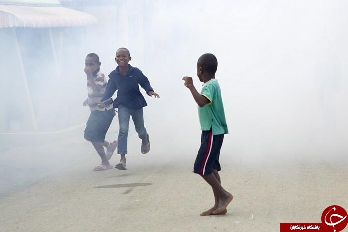 کابوس زیکا در قاره آمریکا+ تصاویر