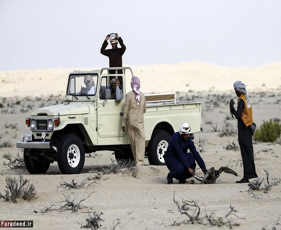 تفریح لوکس و خشن در صحرای امارات!+تصاویر