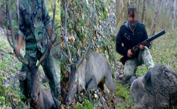 باشگاه خبرنگاران - شکار شکارچی در فضای مجازی+تصویر