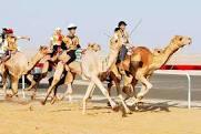 فستیوال جذاب شتر رانی در مصر+تصاویر