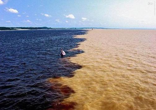 عکس/ مکانی شگفتانگیز در آمازون