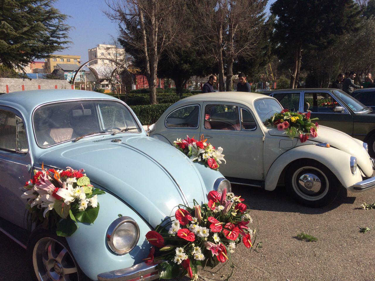 کارناوال گل با خودروهای کلاسیک + تصاویر