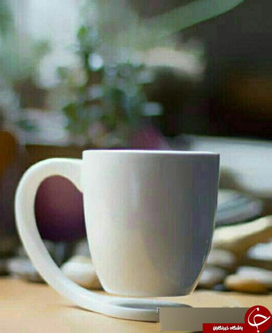 چای را با حیوانات دریایی بنوشید+تصاویر