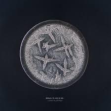 تصویر زیبای اشک از نمای نزدیک