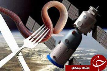 عجیب ترین غذاهای فضانوردی چینی+تصاویر