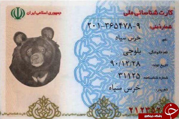 کارت ملی مفقودی