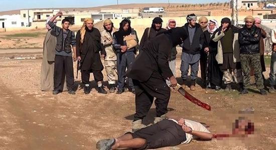 داروی سحرآمیز داعش؛ روانگردانی که مرگ را آسان میکند + تصاویر