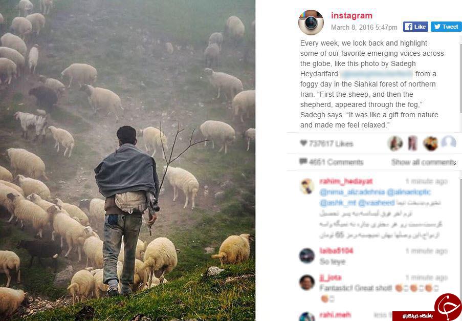 یک چوپان ایرانی تصویر هفته ایسنتاگرام شد+ عکس