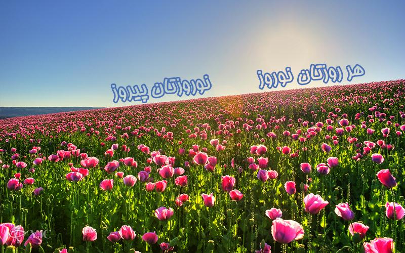 4262147 476 پوسترهای جدید عید نوروز ۹۵