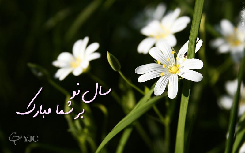 4262151 339 پوسترهای جدید عید نوروز ۹۵