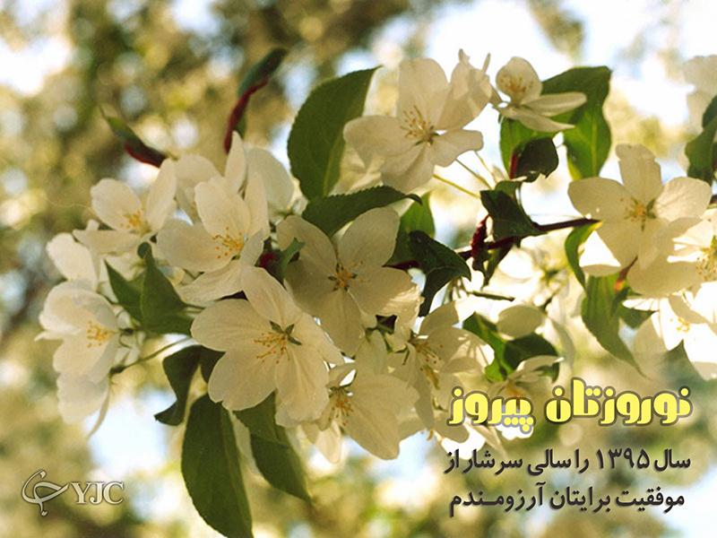 4262157 545 پوسترهای جدید عید نوروز ۹۵