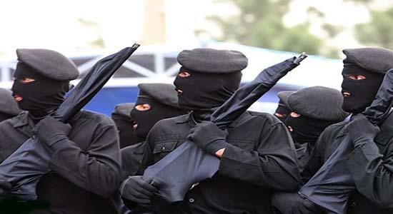 طبقه بندی تکاوران جمهوری اسلامی ایران