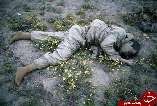 شهید ایرانی در میان گل ها+عکس