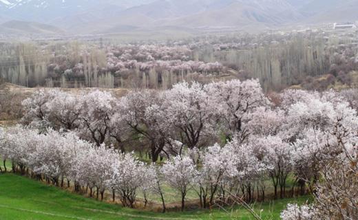 کم هزینهترین شهرهای ایران در نوروز