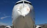 شاخ به شاخ شدن هواپیما و پرنده + عکس
