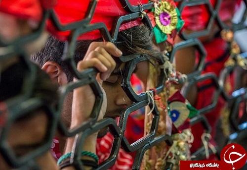 ارادت شیعیان هند به بیرق حرم حضرت عباس (ع) + تصاویر