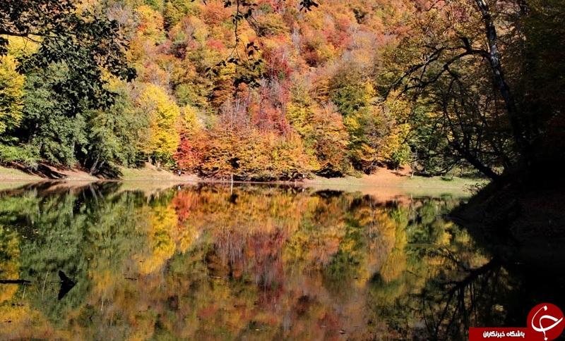 طبیعتی زیبا که پنهان است + تصاویر
