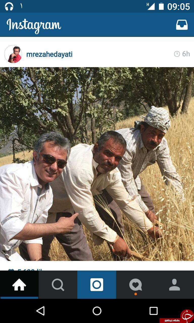 محمد رضا هدایتی در زمین کشاورزی+عکس