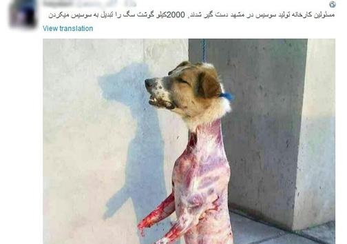 2000کیلو گوشت سگی که تبدیل به سوسیس شد؟ +عکس