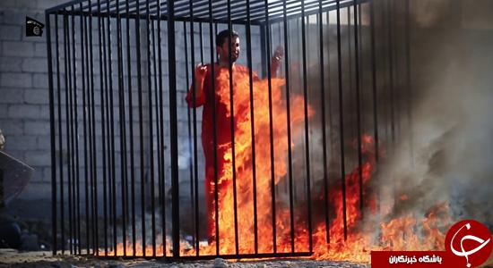 چرا غرب در برابر داعش ذلیل است؟/ درخواست کمک از ایران برای مقابله با داعش