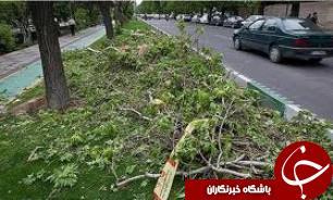 وزش باد شدید تهران را در می نوردد