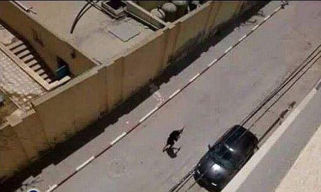 عکس داعش جنایات داعش اخبار داعش