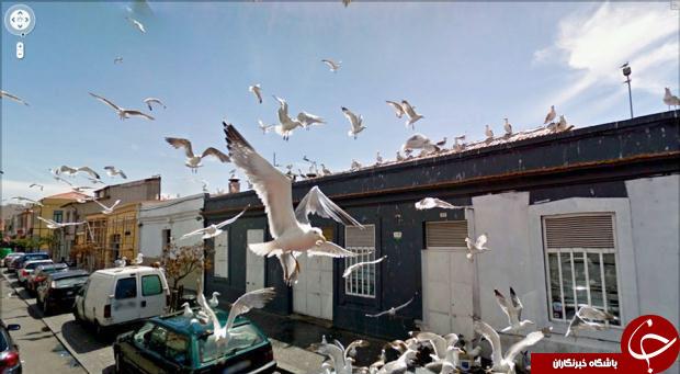 جالبترین تصاویر گوگل از خیابان های دنیا