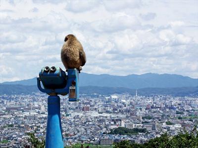 دیدنی ترین شهر دنیا + تصاویر