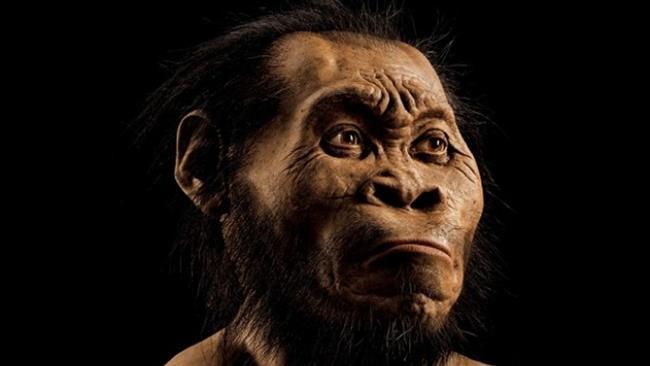 گونه تازهای از انسان نخستین+ عکس