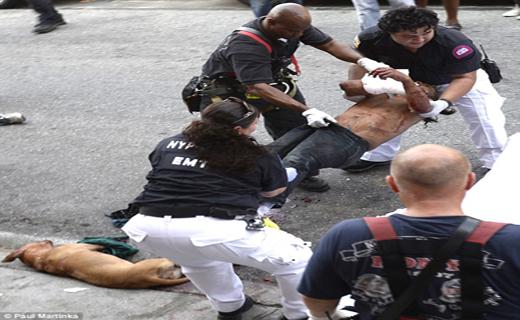 حمله وحشیانه سگ پلیس به یک بی خانمان+ تصاویر