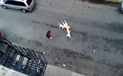 قاتل بی رحم با دوهمدست وحشی اش دستگیر شد+تصاویر