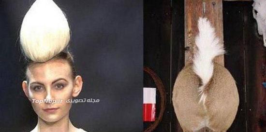 مدل مو های عجیب و غریب و افتضاح + تصاویر