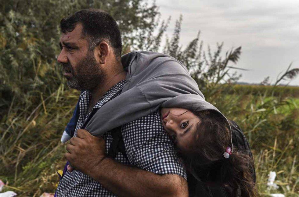پناهجویان/راهی طولانی تا آزادی+ تصاویر
