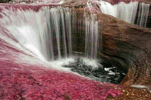 زیباترین رودخانه جهان در 5 رنگ + تصاویر