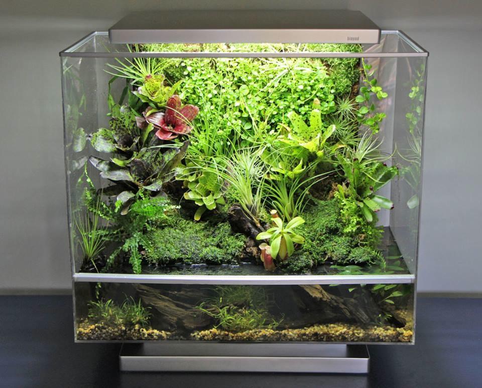 گلخانه هوشمند برای نگهداری حیوانات و گیاهان + تصاویر