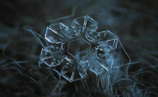 تصاویر منحصر به فرد از دانه های برف+ تصاویر