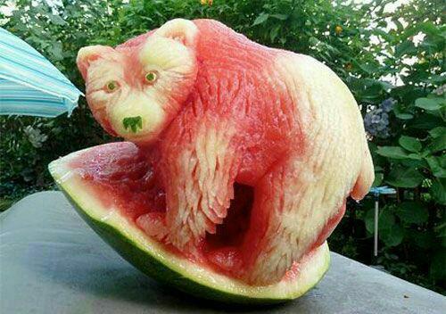 3679422 558 میوهآرایی با هندوانه
