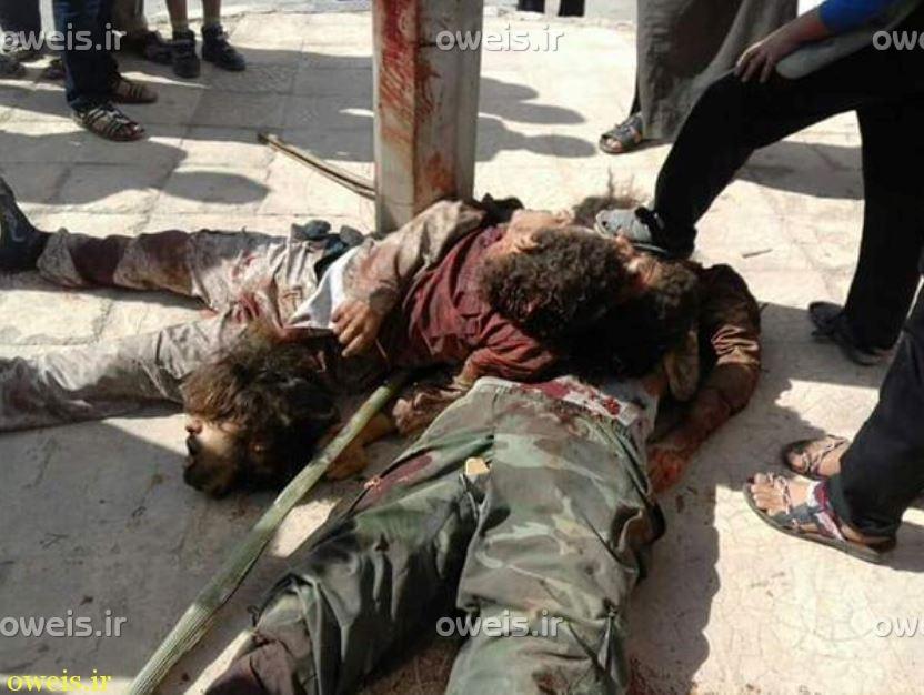 اقدام تروریست های معتدل آمریکایی علیه داعش + عکس (+۱۸)